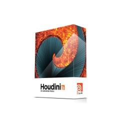 Location Houdini